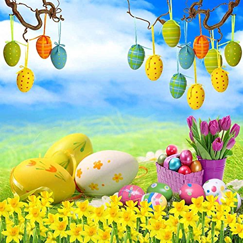 GladsBuy Various Eggs 10' x 10' Digital Printed Photography Backdrop Easter Theme Background YHB-147 by GladsBuy