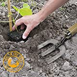 Toil-in-the-Soil-Hand-Held-Gardening-Fork-Strong-Lightweight-and-Durable-with-Ash-Handle-and-Heavy-Grade-Stainless-Steel-Tines