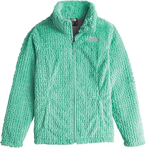 The North Face Laurel Fleece Full Zip Girls' Ice Green X-Large by The North Face