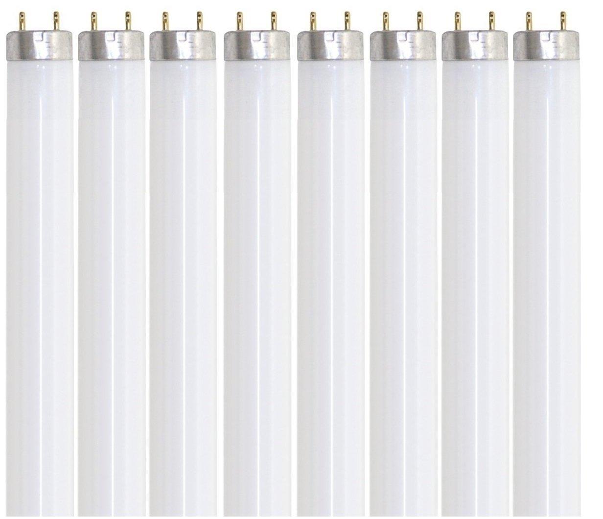 Pack of 8 F32T8/865 32 watt 48'' Straight F32 T8 Medium Bi-Pin (G13) Base, 6,500K Daylight Octron Fluorescent Tube Light Bulb by Sterl Lighting (Image #1)