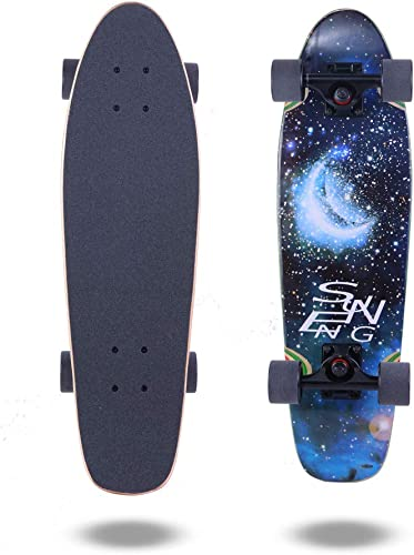 FlyBee Boards 27in Cruiser Skateboard