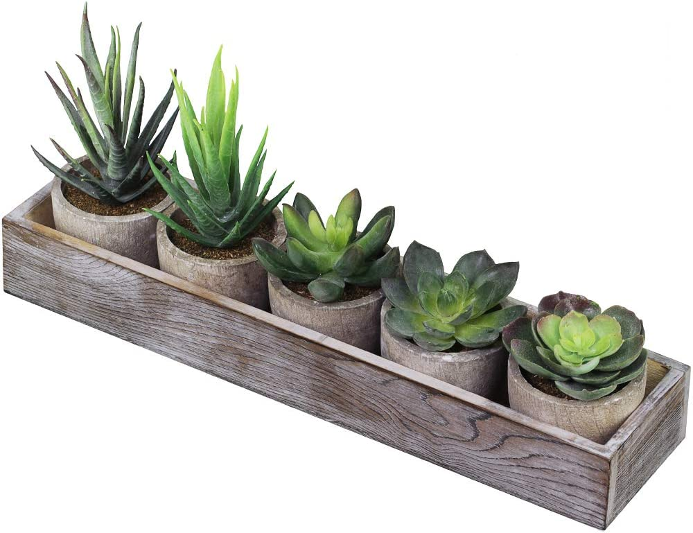 Supla Set of 5 Mini Fake Succulent Cactus Aloe Potted Plant Arrangements Decorative Assorted Potted Artificial Succulents Plants in Gray Pots Succulent Plants Wood Planter Arrangement