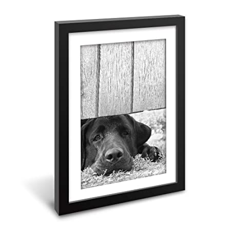 wall26 – Framed Wall Art – A Lying Black Dog in Black White – Black Picture Frames White Matting – 23×31 inches