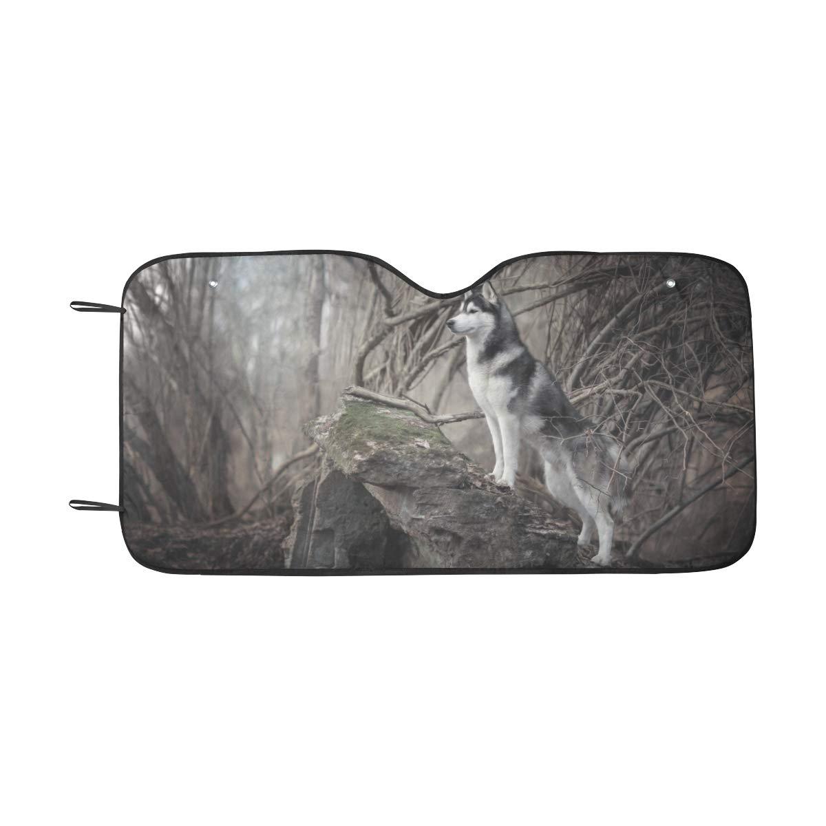 140 cm x Gran sombrilla plegable para el sol y sombra Siberiano Siberiano Husky para un m/áximo de protecci/ón contra rayos ultravioleta y protecci/ón solar Mantenga su veh/ículo fresco 55 x 30 pulgadas