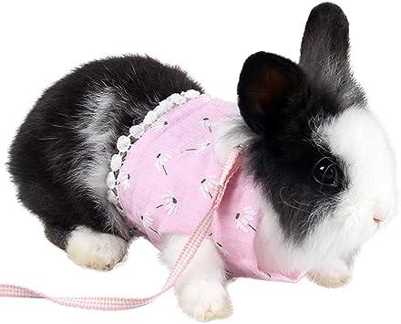 ZuckerTi - Arnés Suave para Animales pequeños (Gatos, Cachorros ...