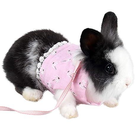 ZuckerTi - Arnés Suave para Animales pequeños (Gatos, Cachorros, Conejos, Ratones hámsteres