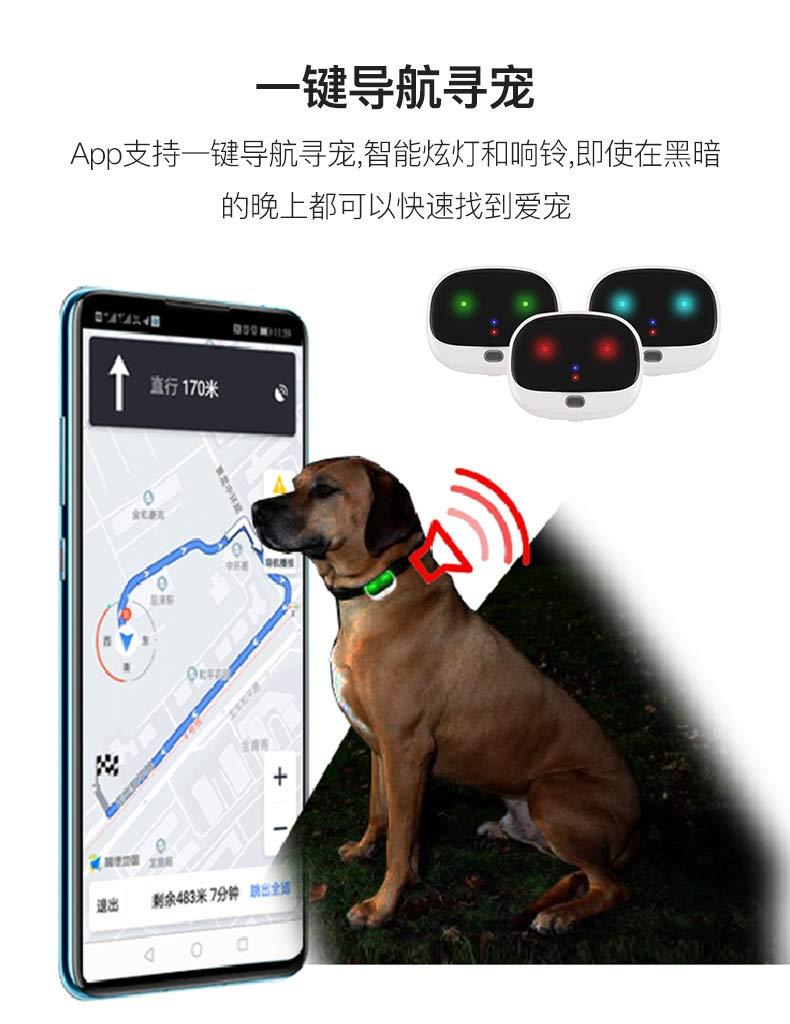 WICIS Mascota del GPS, Localizador Impermeable Collar de Perro GPS para Ayudar a Encontrar y Mantener el Perro//Gato 4G Segura,Oro