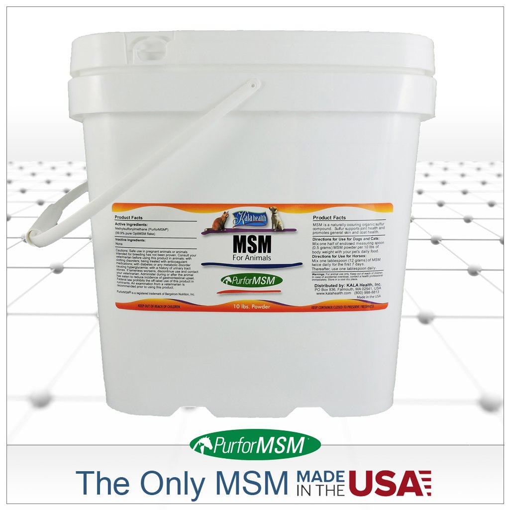 Kala Health MSM Powder (PurforMSM) for Horses. 10-lbs Container. Ideal Support for Equine Joints and Hoofs. Produced in The USA.