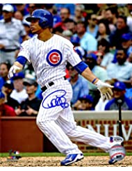 Willson Contreras Signed Chicago Cubs Swinging Action 8x10 Photo