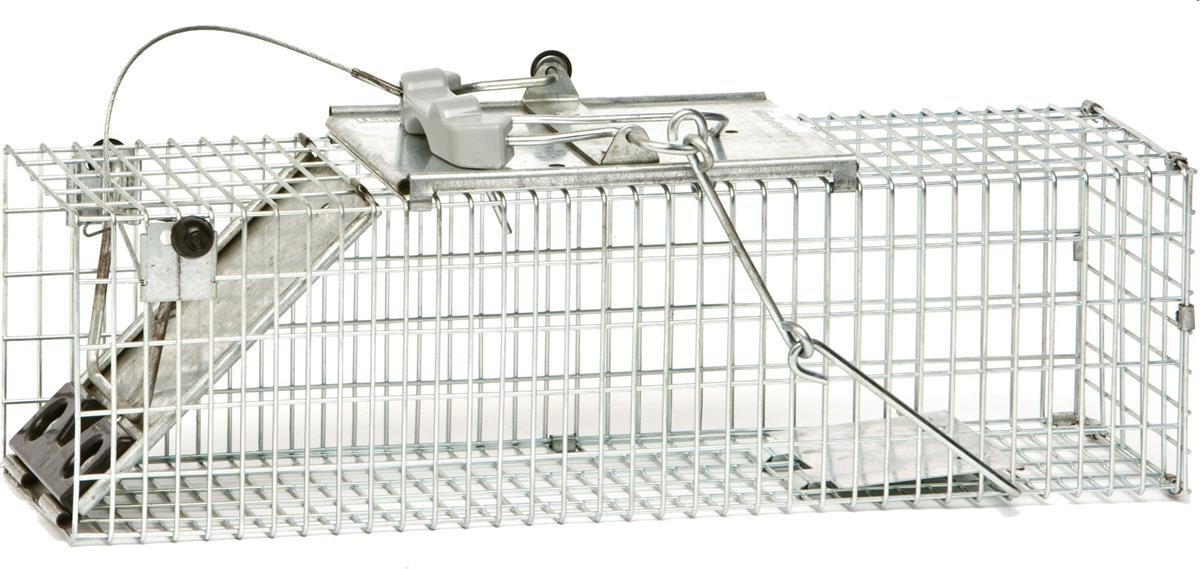 Havahart Live Animal Professional Style Rat and Squirrel Cage with 1-Door Woodstream Europe Limited 100061157
