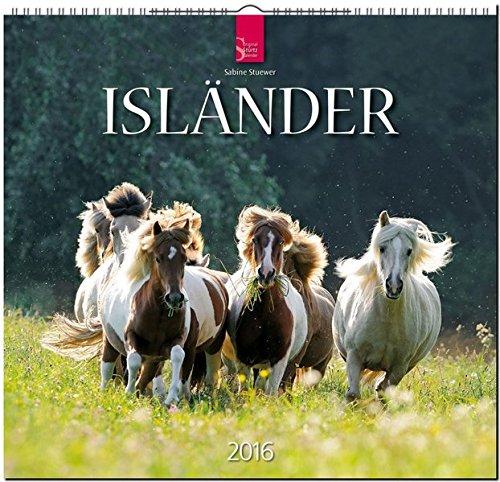 Isländer 2016: Original Stürtz-Kalender - Mittelformat-Kalender 33 x 31 cm [Spiralbindung]