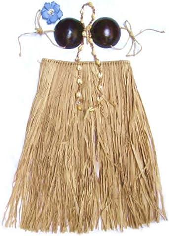 Hawaiian Hula Grass Skirt Set Real Raffia Coconut Bra Lei Hair Flower Child Nat