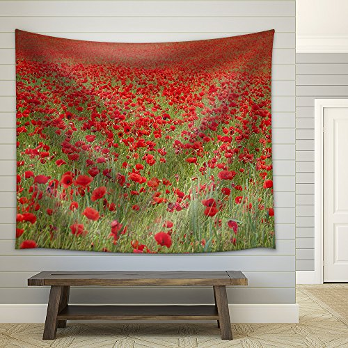 an Entire Fields of Wonderful Red Poppies Fabric Wall