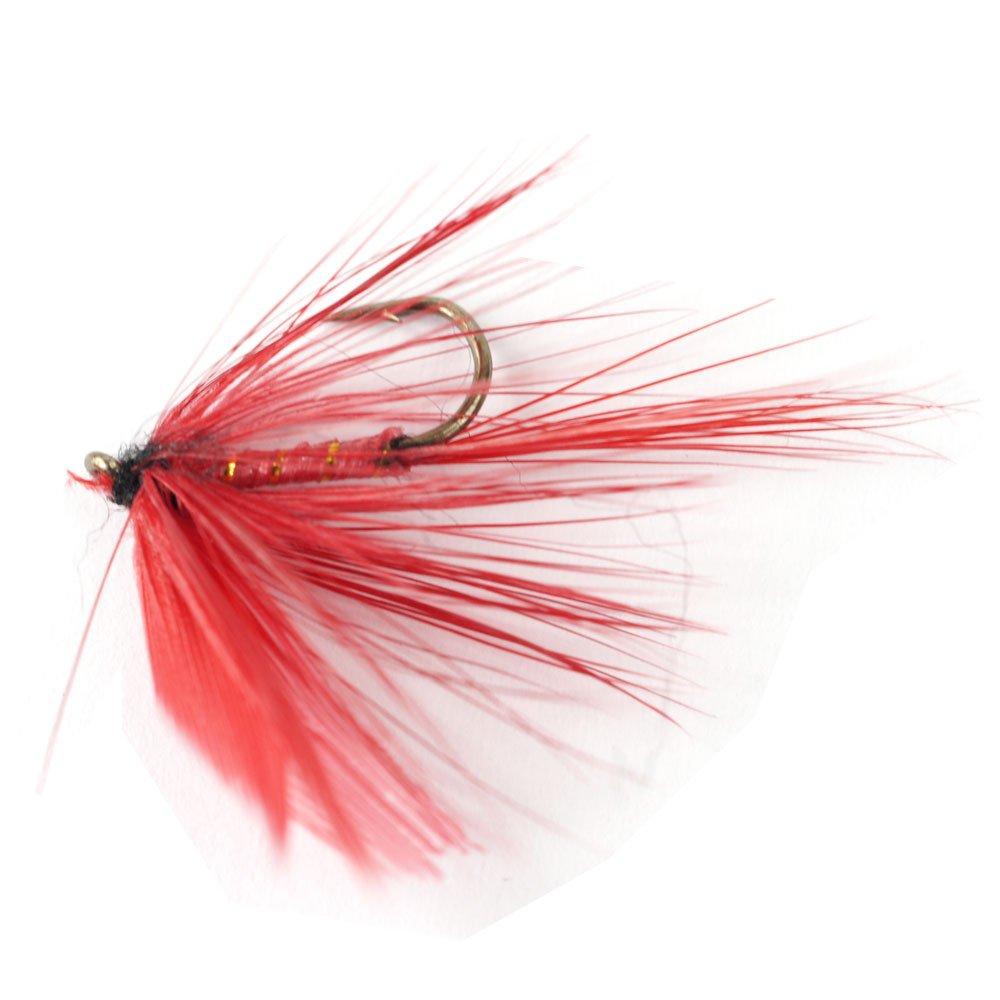 Amazon.com : Silver Lake Fishing Flies Assortment : Wet Fishing ...