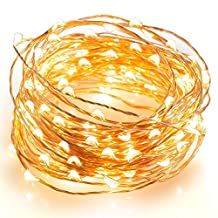 Sea Star 100 LEDs Starry String Lights 33ft/10m Silver Copper Wire With Wireless Remote Control And Power Adapter , Decor Rope Lights for Garden, Patio, Tree, Party, Xmas, Indoor and Outdoor Decor (Warm White Copper)