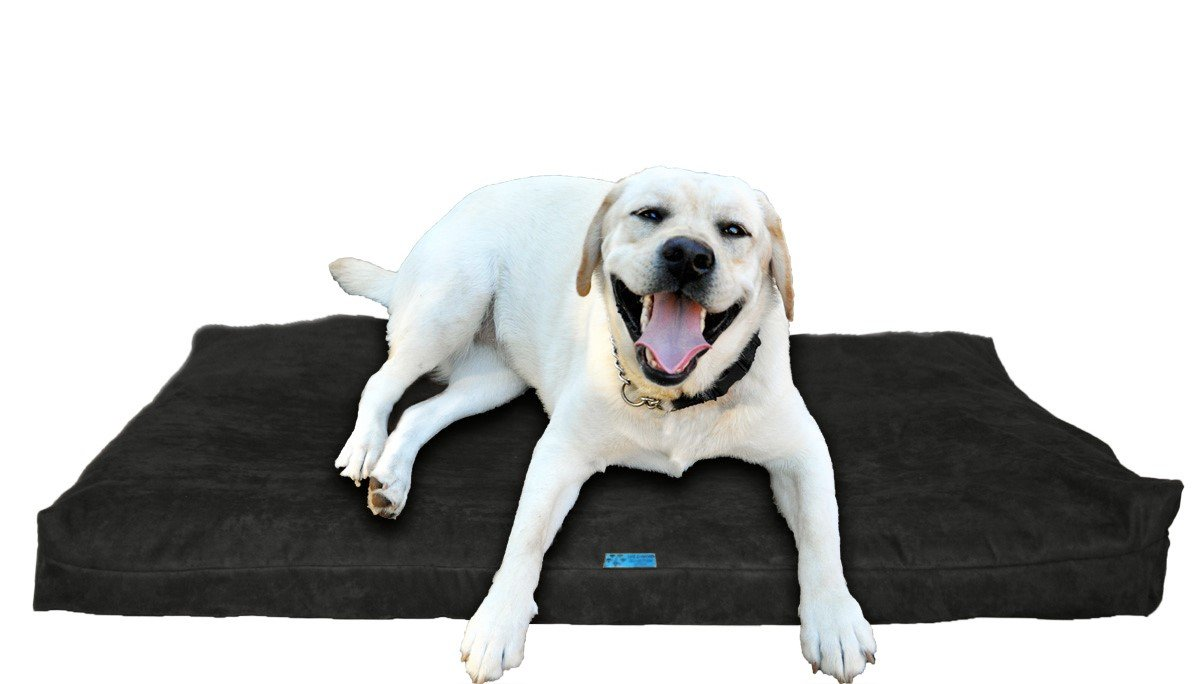 Charcoal Microfiber Large 40\ Charcoal Microfiber Large 40\ Five Diamond Collection Shredded Memory Foam Orthopedic Bed with Removable Washable Cover and Water Proof Inner Fabric, Large (40-Inch-by-35-Inch), Charcoal Microfiber, for Dogs