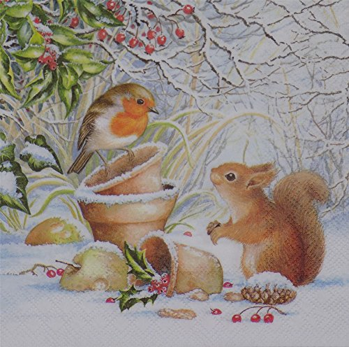 (WINTER ROBIN SQUIRREL WHITE 3-PLY 20 PAPER NAPKINS SERVIETTES 13