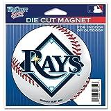 Devil Rays Die Cut Magnet