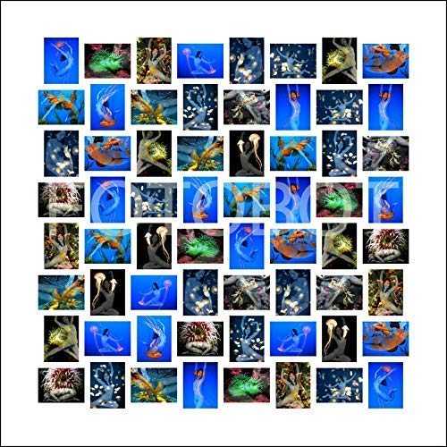 (Aphrodite Mosaic Montage Nude Limited Edition Photo Montage Print )
