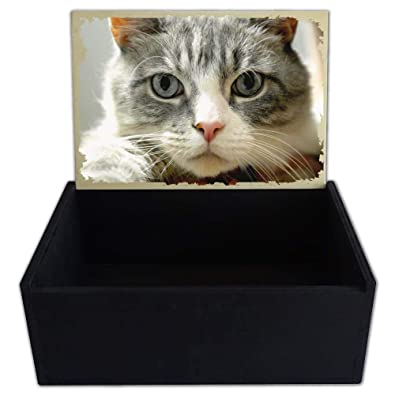 Capricci Italiani - Caja Porta Objetos de Madera con Gatos: Amazon ...