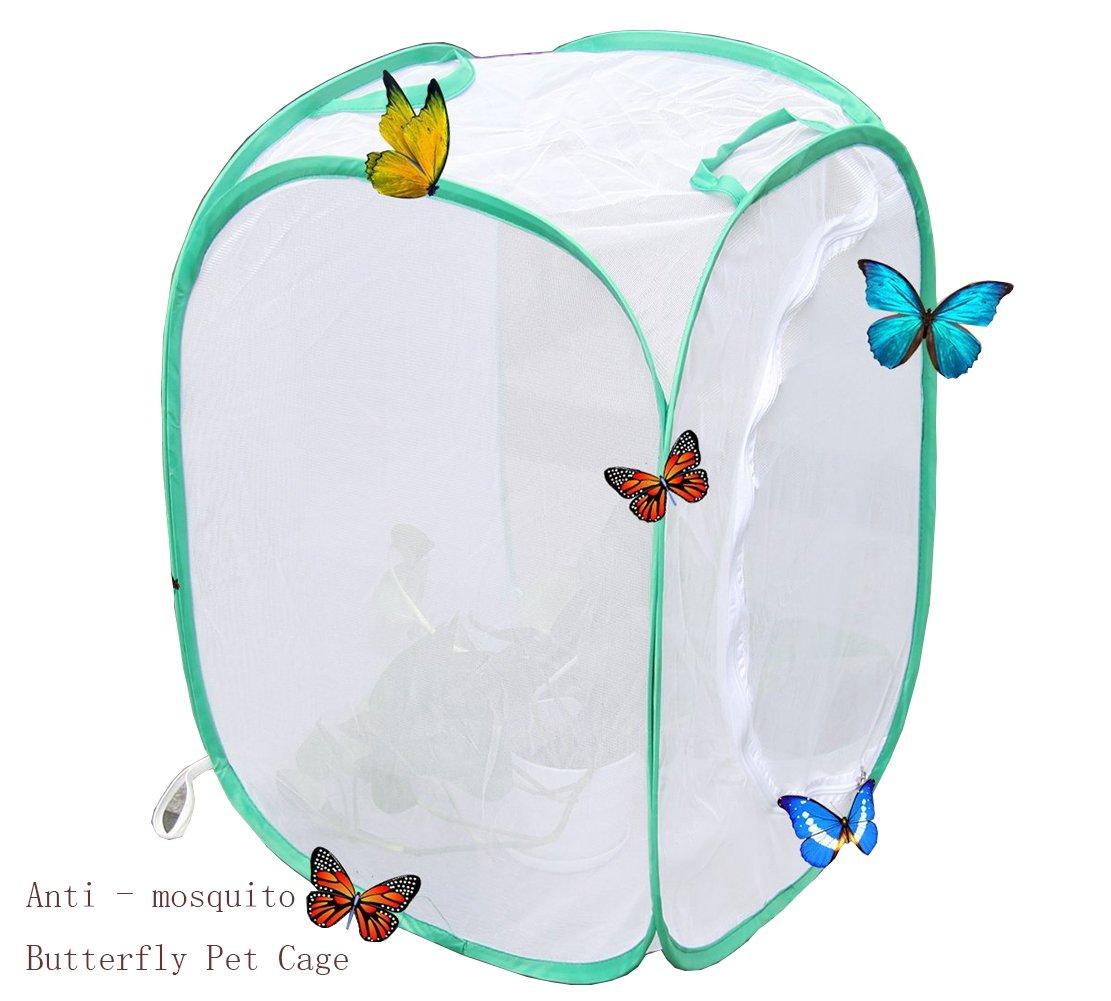 Mini Gew/ächshaus Wachsen Haus 1 pack Pflanzen Gew/ächshaus Transparent Wasserdicht Anbau Zimmer Anti-moskito Box Schmetterling Pet Cage wachsen zelt