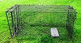 Humane Way 914050 Live Animal Trap, X-large 50''x19''x24''
