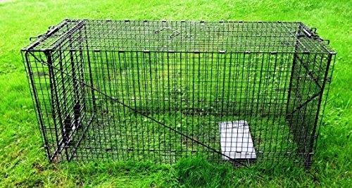 Humane Way 914050 Live Animal Trap, X-Large 50