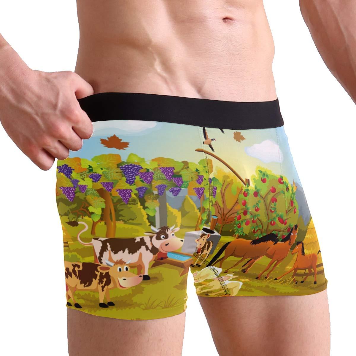 Cartoon Farm Animals Autumn Mens Underwear Soft Polyester Boxer Brief for Men Adult Teen Children Kids S
