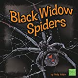 Black Widow Spiders, Molly Kolpin, 1429645199