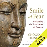 Bargain Audio Book - Smile at Fear