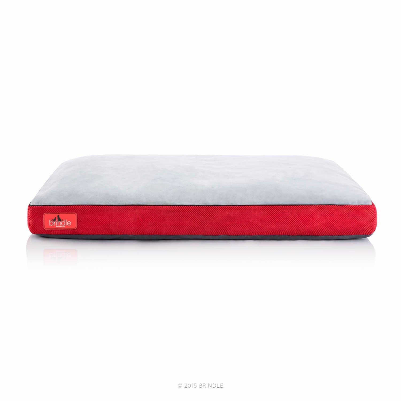 Brindle Cama de Perro de Espuma de Memoria Suave con Cubierta Desprendible Lavable Red 22in x 16in: Amazon.es: Productos para mascotas