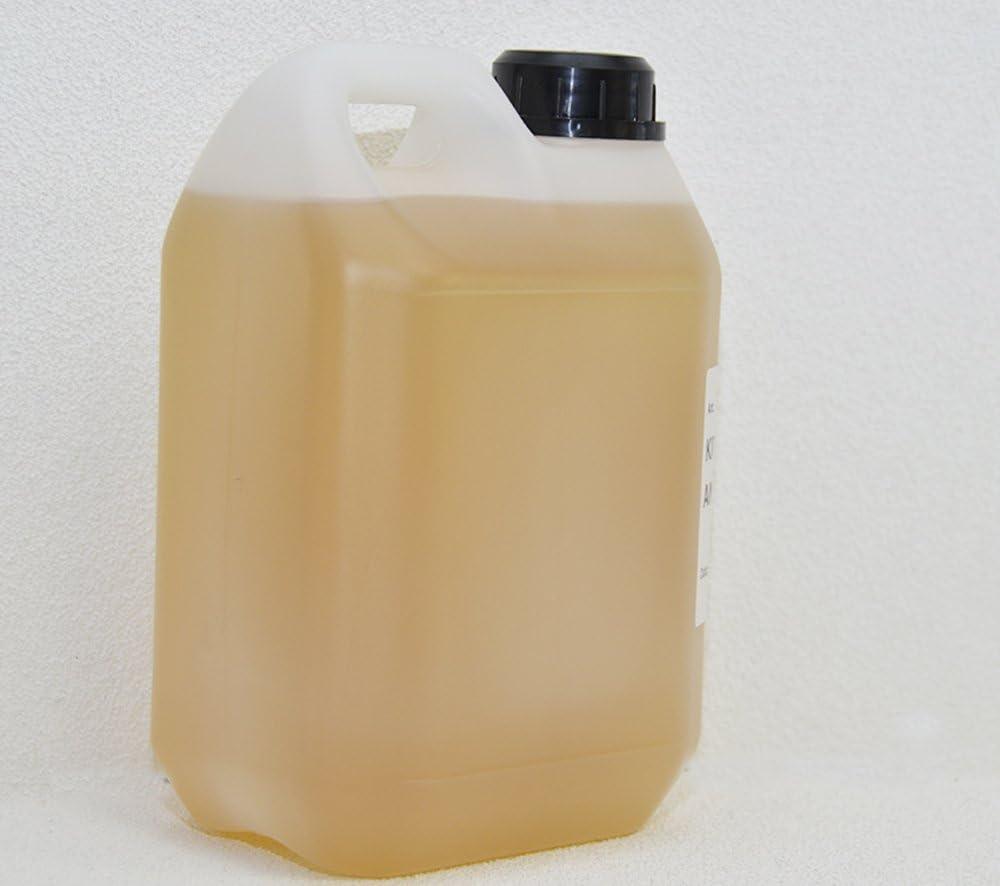 Bft Öl Dielektrikum 2 Lt Speziell Für Elektromotoren A Ölheizung Baumarkt