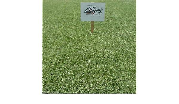 Pennington Mohawk Bermuda Grass Seed 1//2 Lb.