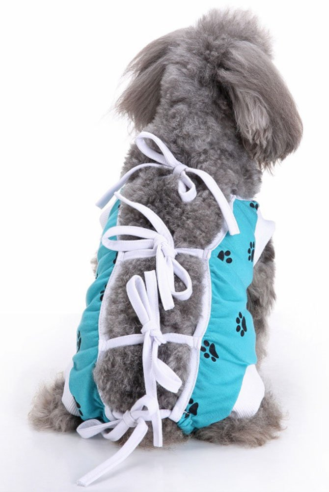 MaruPet E-Collar Alternative for Cats and Dogs Designed to Protect Abdominal Wounds and Skin Disease. Award Winning and Patented Design Recommended by Veterinarians Worldwide