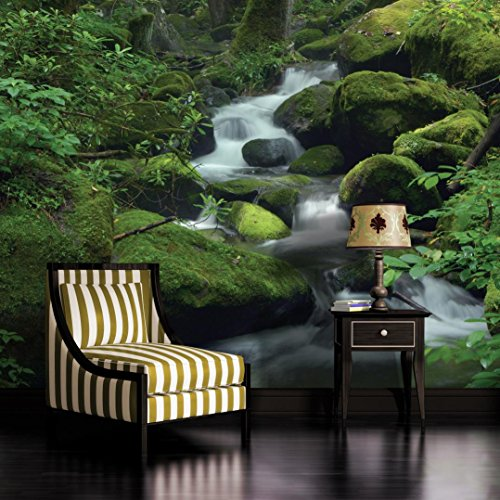 - Mountain Stream in Forest Wallpaper Mural