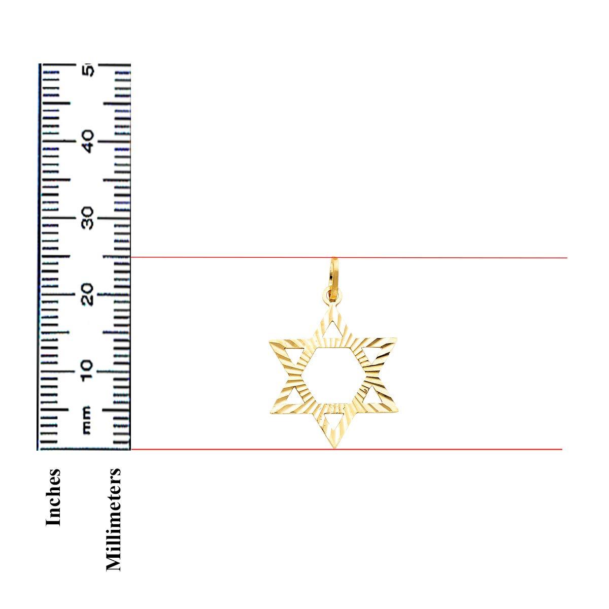 TGDJ 14k Yellow Gold Star David Pendant