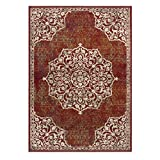 Superior Floral Maia Area Rug 8′ x 10′ Maroon Review