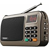 Rolton W405 Portable Mini FM Radio Speaker Music Player TF Card for PC iPod Phone with LED Display (Gold)