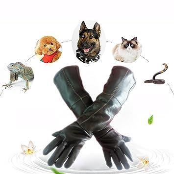 DAN Guantes de manipulación de Animales para Gato Perro pájaro Serpiente Loro Lagarto, Anti-mordedura/arañazos Guantes de protección de Animales Salvajes de ...