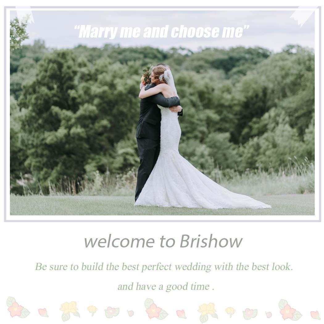 Brishow Rhinestone Bridal Belt Crystal Wedding Sash Appliqarl Thin Silver Bride Dress Belts Accessories for Women and Girls