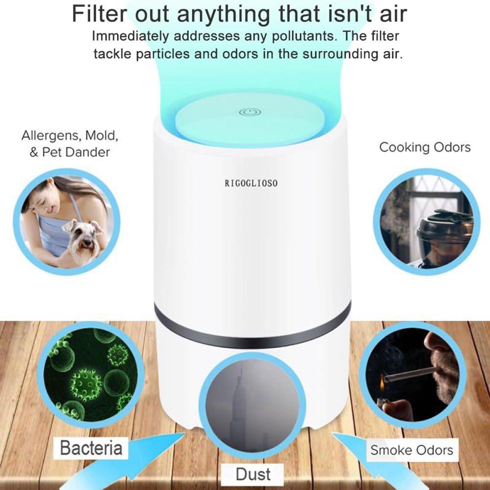 RIGOGLIOSO - Ionizador de Escritorio, purificador portátil de Aire HEPA, Elimina el Humo del Cigarrillo, Polvo, Polen, Malos olores, con Cable USB de 5 V, 125195 mm: Amazon.es: Hogar