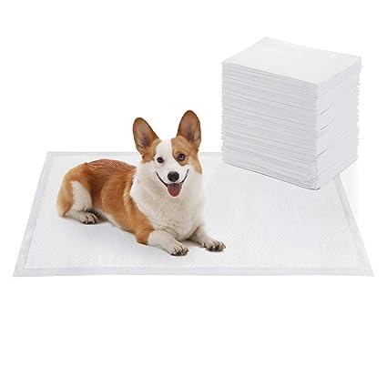 FEANDREA 100 Unidades Empapadores para Cachorros, Almohadillas de Entrenamiento, Absorbente, 60 x 90