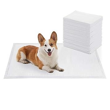 SONGMICS 100 Unidades Empapadores para Cachorros, Almohadillas de Entrenamiento, Absorbente, 60 x 90 cm PTD91WT: Amazon.es: Productos para mascotas