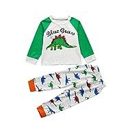 Suma-ma Cartoon Dinosaur Tops Pants Outfits Set Pajamas Sleepwear for Kids Toddler Baby Girls Boys (5T, Multicolor)