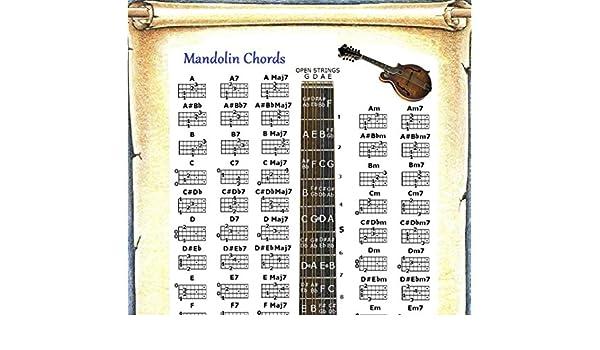 Amazon Mandolin Chords Poster Note Locator Chart Musical
