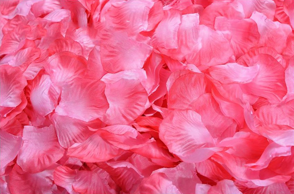 Ocharzy 1000pcs Silk Rose Petals Wedding Flower Decoration (Bright Red) OC07