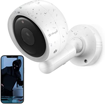 Abegal 1080p Wireless Outdoor Security Camera