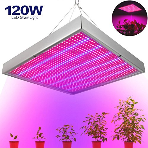 LVJING 120W LED Grow Light Panel for Indoor Plant - Red Blue Spectrum Plant Grow Light Lamp for Garden Hydroponic Greenhouse Flowers Vegetables Growing