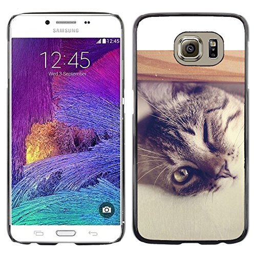 STPlus Gato en una caja Animal Carcasa Funda Rigida Para Samsung Galaxy S6 #26