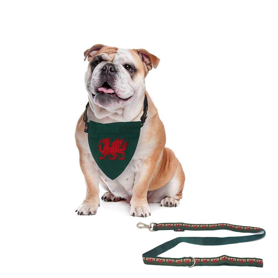 3 PCE Set Designer Patriotic Welsh Wales RED Dragon Flag Bandana Dog Lead Small Collar